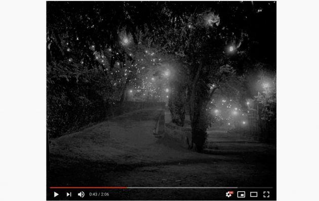 Exposición 'Nocturnas'. Alhambra