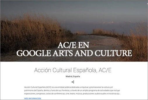 ACE en Google Arts