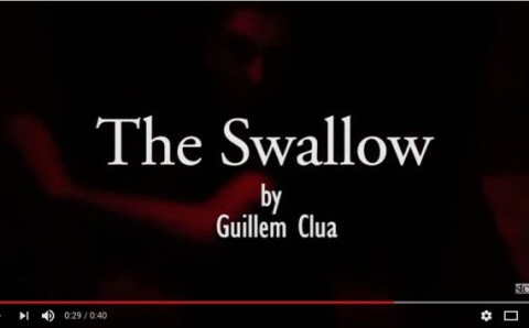 The Swallow. Tráiler
